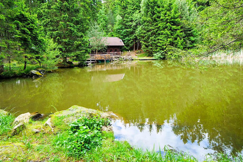 Idyllischer Klieberteich: Verweilen & Natur genießen - Slow Trail Zwergsee beim Millstätter See - Kärnten in Österreich