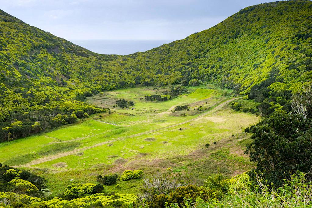 Monte Brasil - Ausblick in den grünen Schlund eines Kraters - Terceira - Azoren