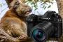 Panasonic Lumix G9 – Beste Reisekamera für Profis & Einsteiger, die mehr wollen!