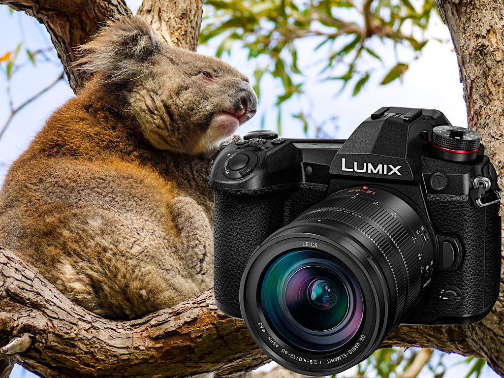 Panasonic Lumix G9 - Beste Reisekamera für Profis & Einsteiger - Passenger On Earth