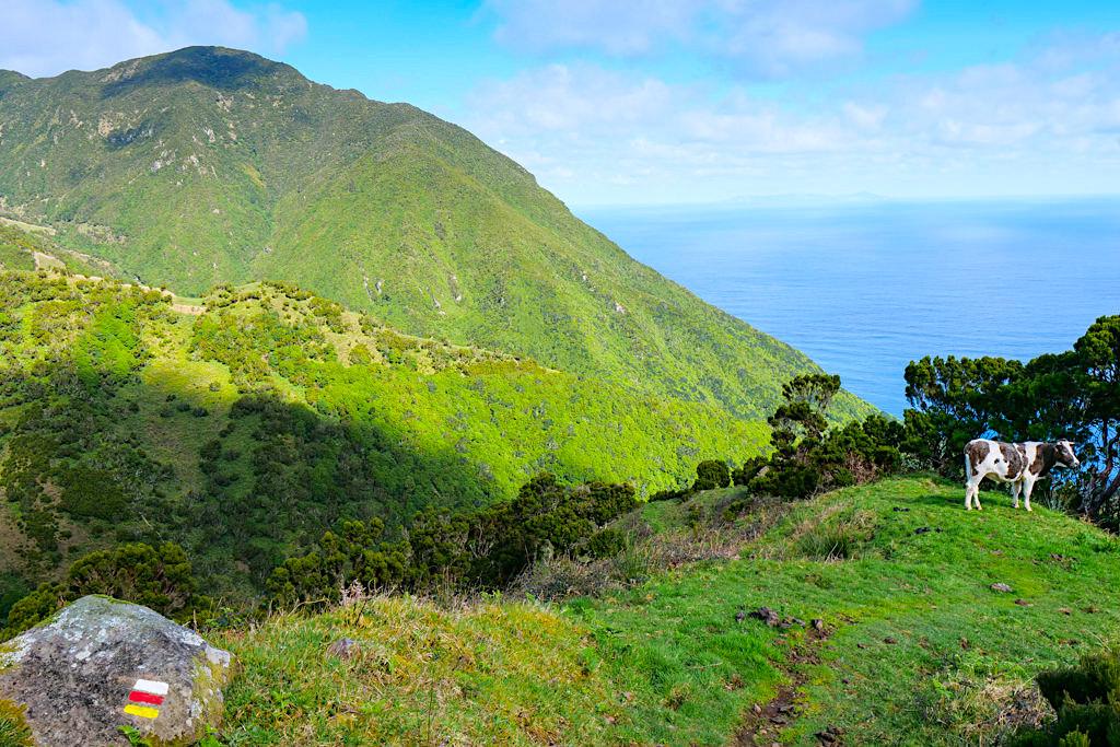 Schönste Sao Jorge Wanderung - Von der Caldeira da Cima zur Faja da Caldeira de Santo Cristo - Azoren