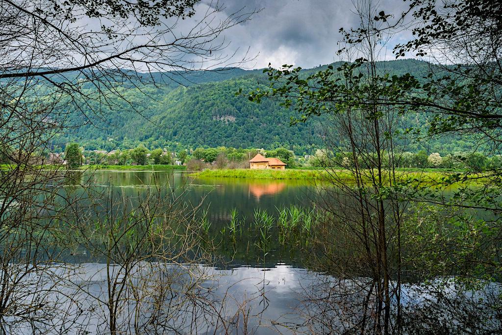 Slow Trail Bleistätter Moor - Genusswanderung in einer faszinierenden Moorlandschaft beim Ossiacher See - Kärnten, Österreich