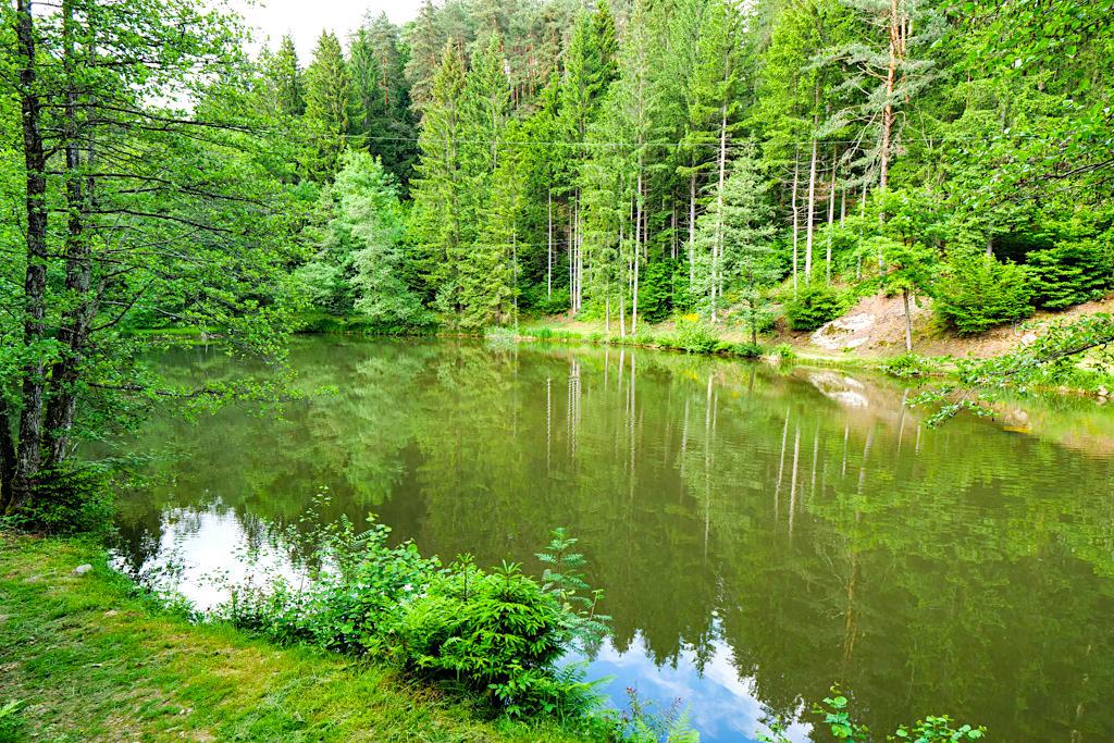 Slow Trail Zwergsee am Millstätter See in Kärnten: Einladung zum Verweilen & Genießen - Österreich