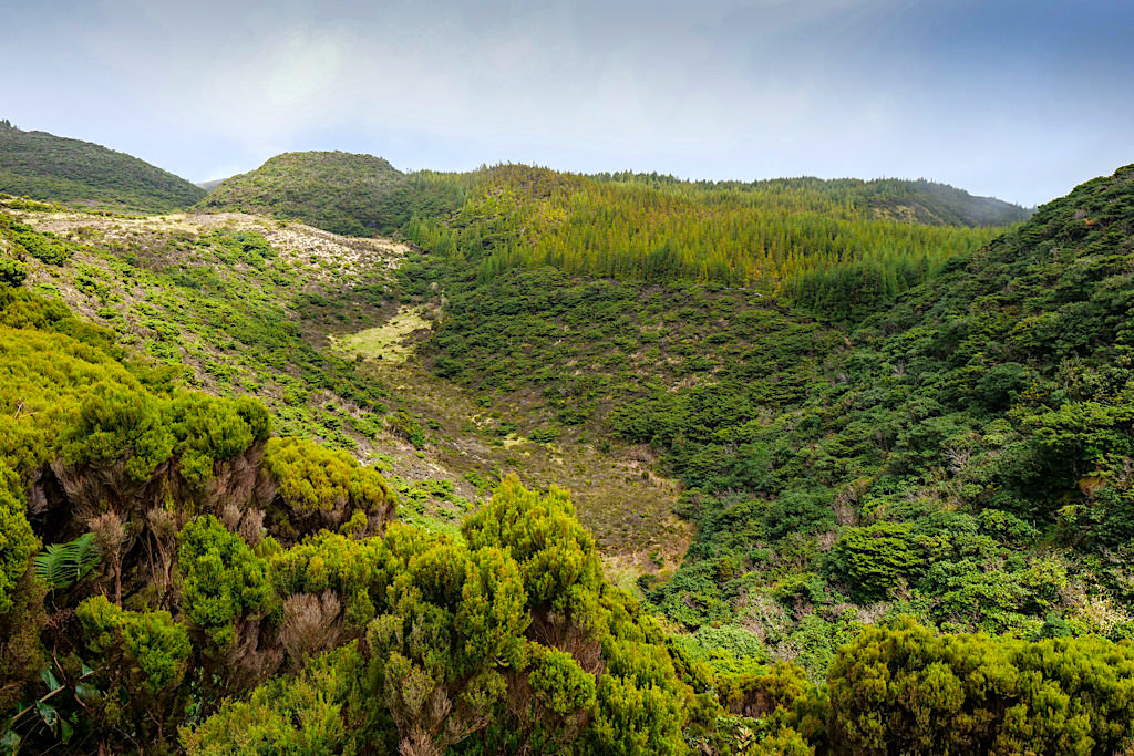 Ursprüngliches Terceira - Nebenstrecke Richtung Norden - Azoren