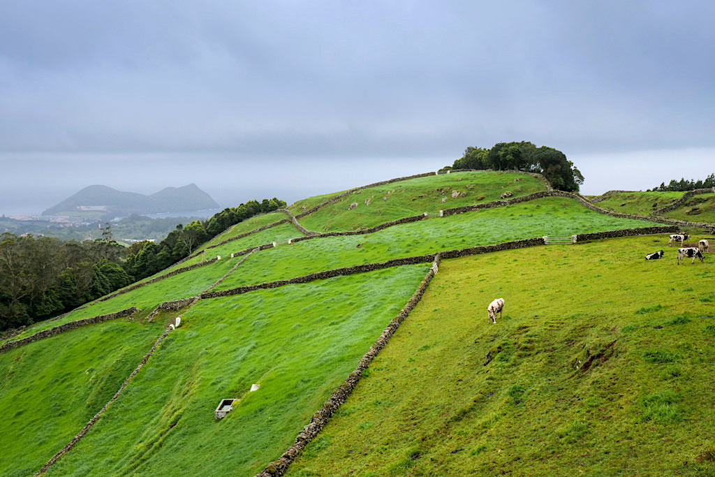 Terra Cha: grandioser Ausblick auf Angra und das Hinterland auf Terceira - Azoren