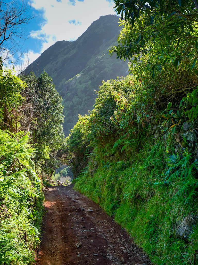 Wanderung von Faja dos Cubres zur Faja da Caldeira Santo Cristo - Sao Jorge, Azoren