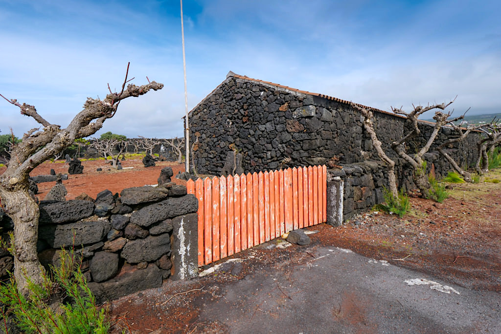 Adegas - Weinkeller & Lavasteinhütten zur Weinverarbeitung auf der Azoreninsel Pico