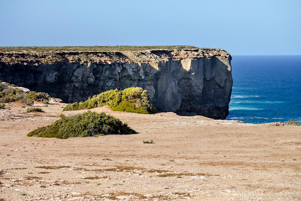 Bunda Cliffs - Steilklippen & Indischer Ozean: ein Nullarbor Highlight - Southern Australia