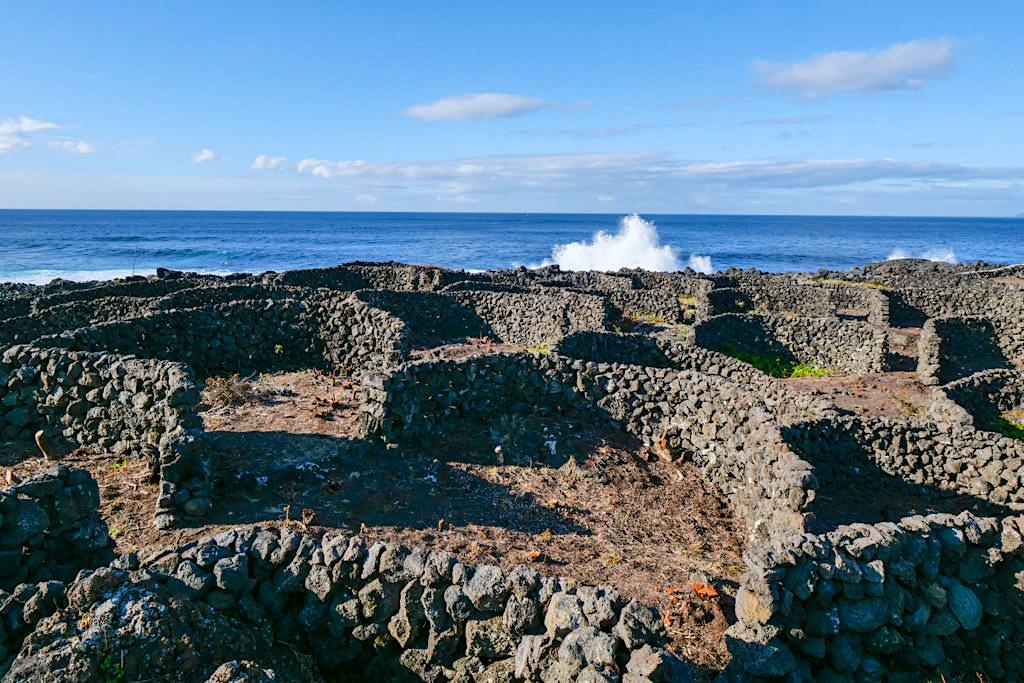 Currais sind im Halbkreis angelegt - Norden von Pico - Azoren