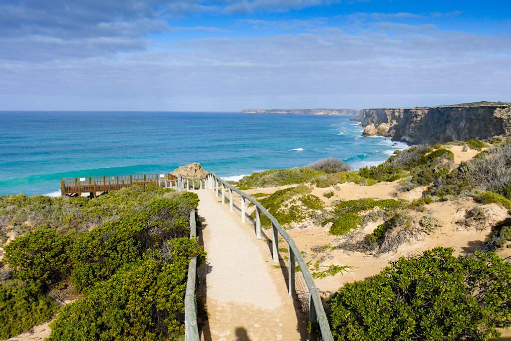 Head of Bight - Schön angelegte Holzstege führen zu den steilen Klippen - Nullarbor - South Australia