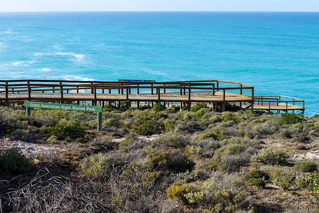 Head of Bight & Great Australian Bight Marine Park: ein Nullarbor Highlight - Southern Australia