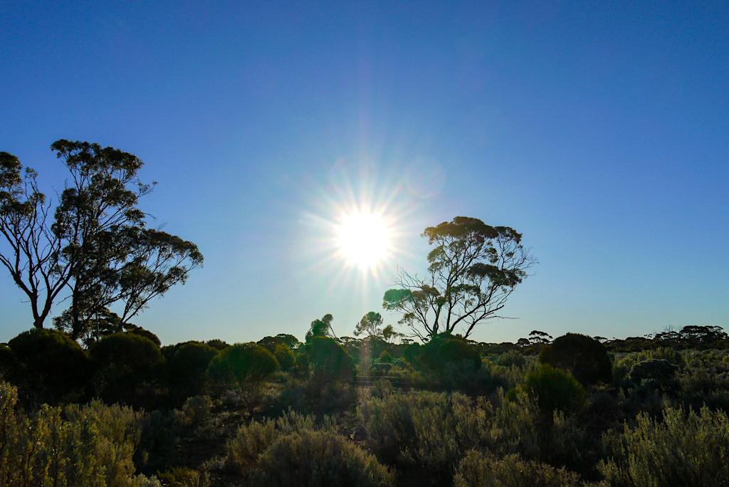 Nullarbor - Fahrt der Sonne entgegen - Western Australia