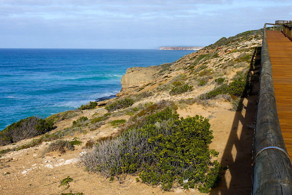 Nullarbor - Head of Bight: Holzstege, steile Klippen & Südkaper Wale - Southern Australia