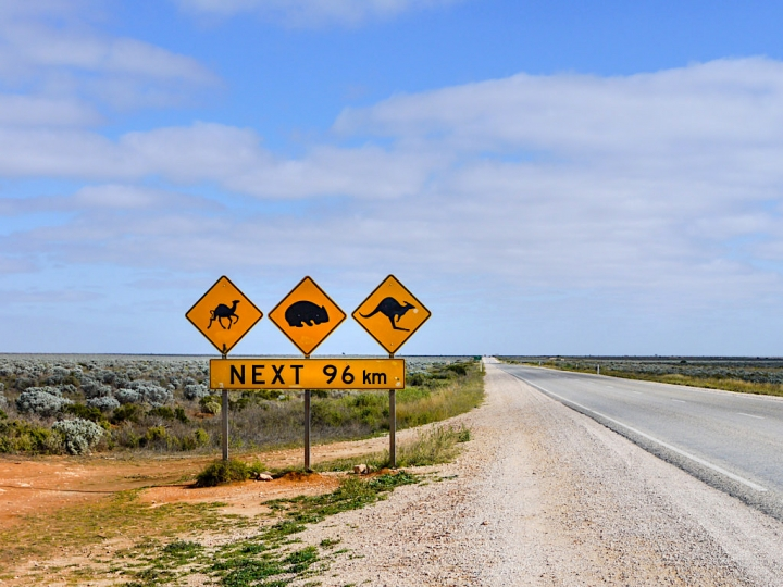 Nullarbor Plain Highlights & Faszination Outback Roadtrip - Southern Australia