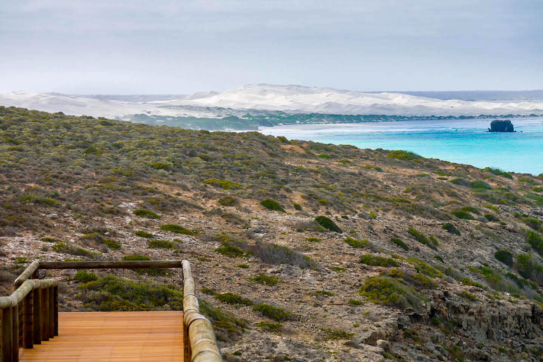 Nullarbor Highlights - Sanddünen am Head of Bight - Southern Austalia