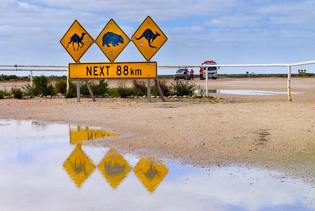 Nullarbor - Eine Seltenheit in der trockenen Karstwüste: Schilder spiegeln sich in einer Pfütze - South Australia