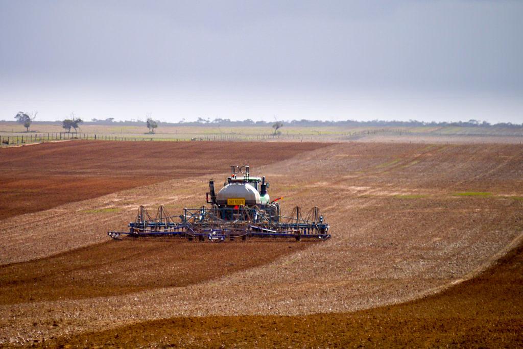 Penong - Weizenanbau im Süden von South Australia's Wheatbelt