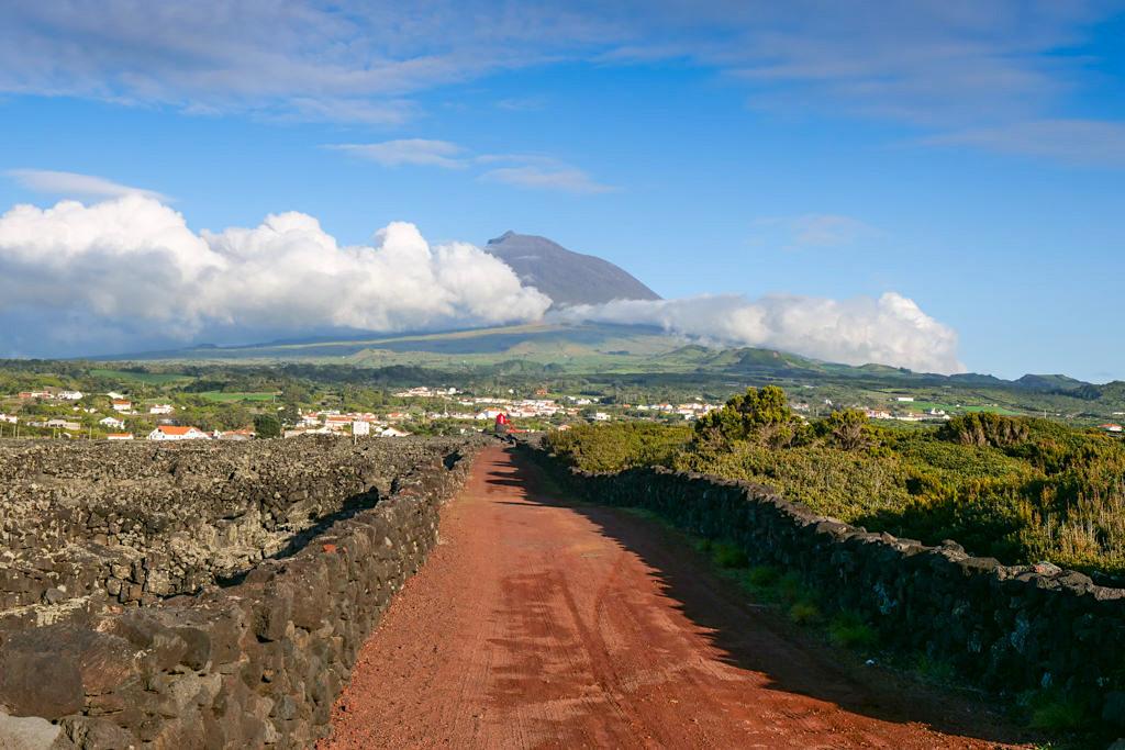 Pico Wein & Weinanbau vom Aussterben bedroht? - UNESCO Weltkulturerbe - Azoren