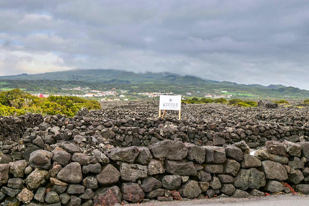 Pico Wein & Weinanbau - Historische Currais wurden zum UNESCO Weltkulturerbe ernannt - Azoren