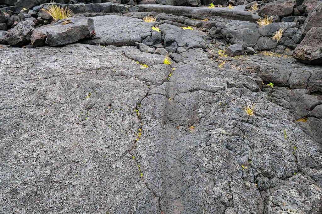 Relhairas: Ochsenkarren-Spuren auf Lavasteinen - Pico Wein & seine Geschichte - Azoren
