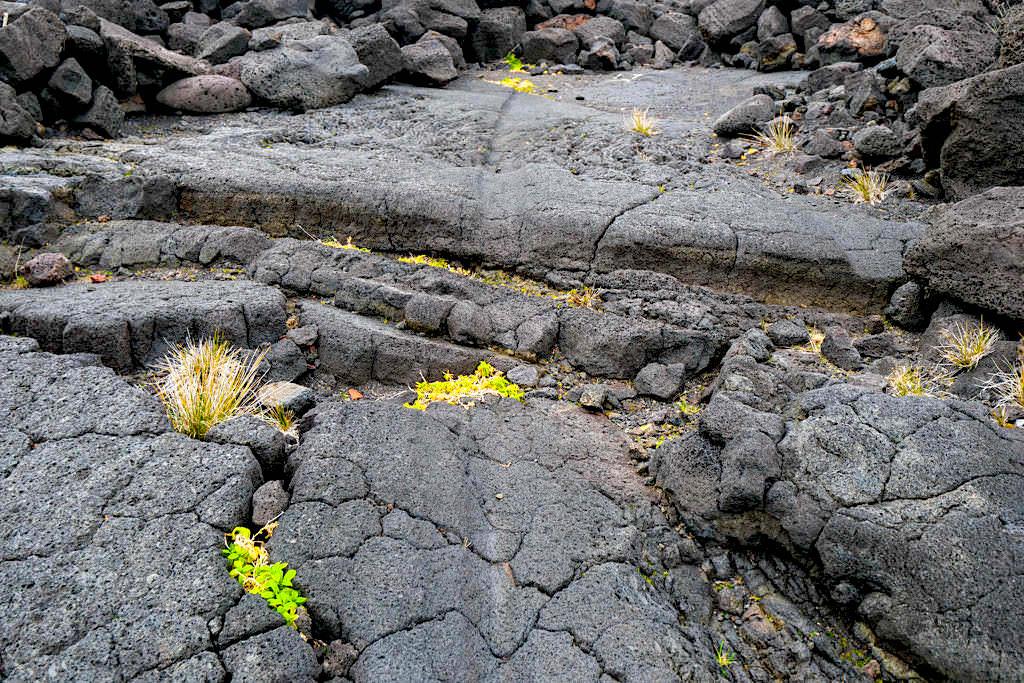 Relheiras: Wagenspuren von Ochsenkarren haben sich in Lavasteine eingebrannt - Pico Weinanbau & seine Geschichte - Azoren