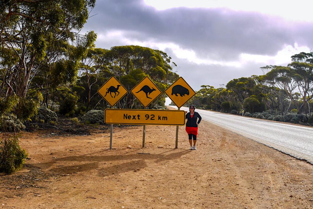 Road Signs: lustige Straßenschilder - Nullarbor Durchquerung kurz nach Penong - South Australia