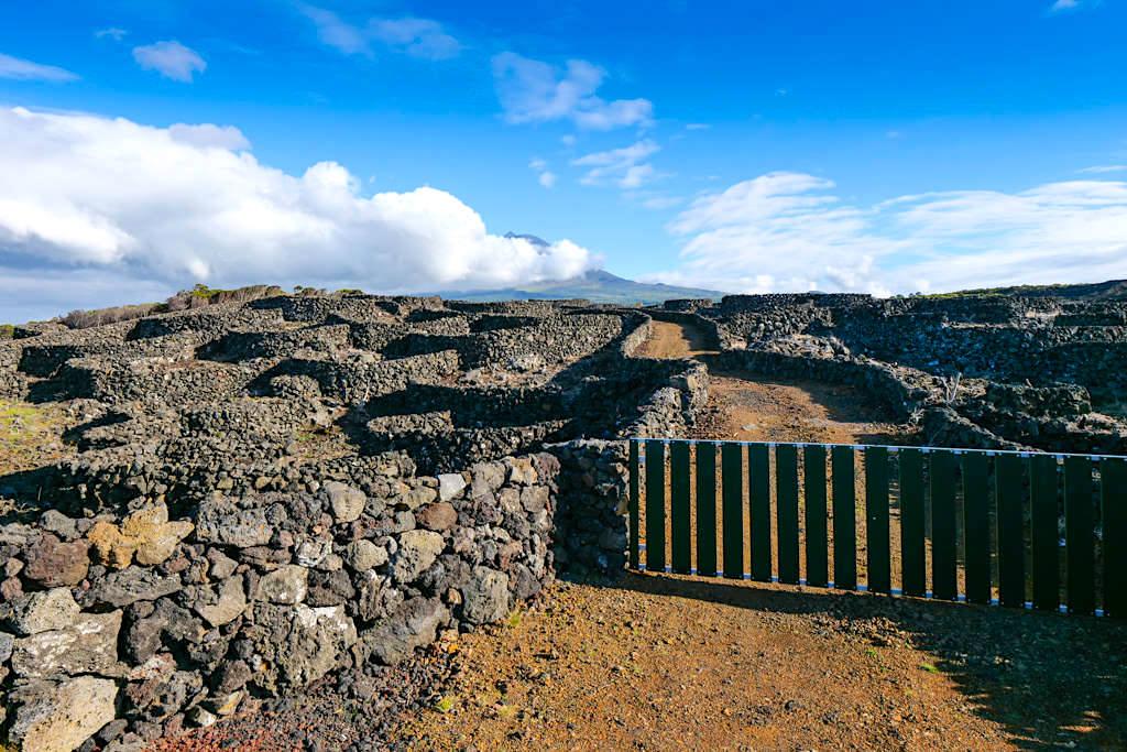 Runde Currais: im Norden von Pico sind die Lavastein-Schutzwälle kreisförmig angelegt - Azoren