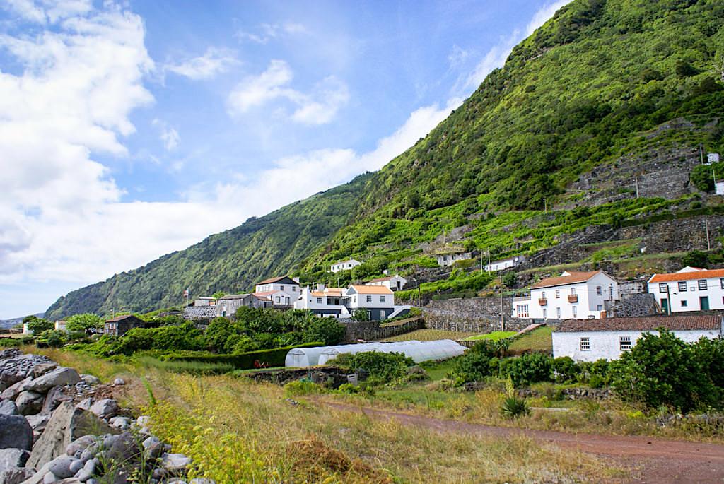 Faja dos Vimes - Fruchtbares Mikroklima - Sao Jorge, Azoren