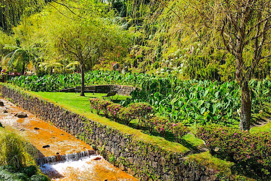 Malerisches Furnas - Viele prächtige Gärten & ein warmer Fluss - Sao Miguel, Azoren