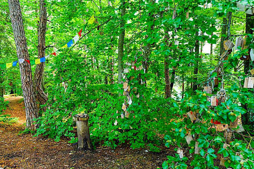 Kathreinkogel: Kraftorte am Wörthersee - Wunschbaum mit Wünschen auf Holztafeln geschrieben - Kärnten, Österreich