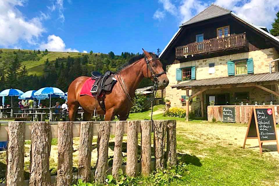 Poellingerhütte - Gerlitzen Alpe - Kärnten, Österreich