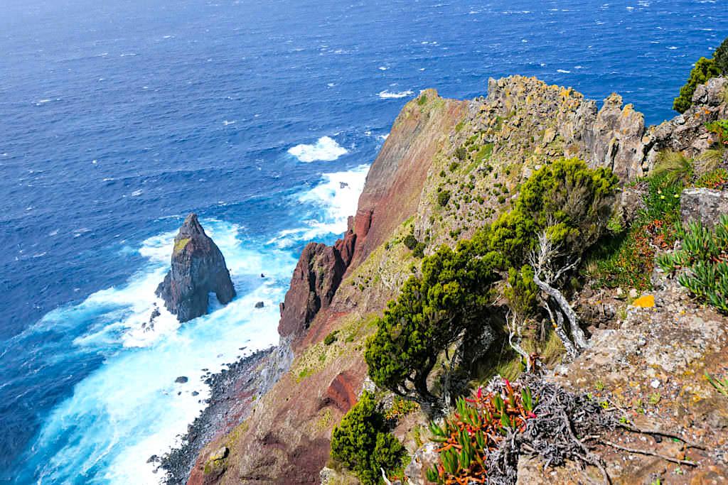 Ponta dos Rosais - Atemberaubender Ausblick auf 300 m tiefe Steilklippen - Sao Jorge, Azoren