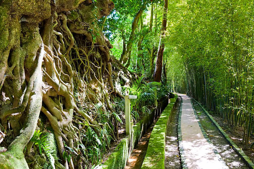 Quinta do Mo: Exklusiv mit viel Privatsphäre - Erholsame grüne Oase in Furnas - Sao Miguel, Azoren