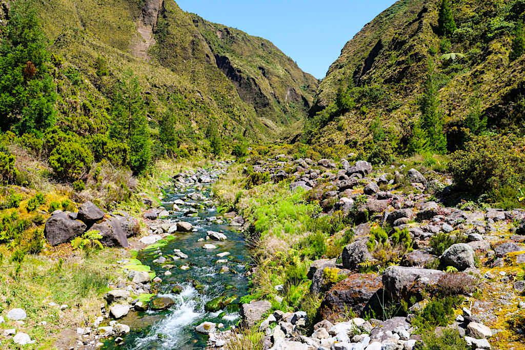 Der Fluss Ribeira Grande im Vale das Lombadas - Sao Miguel, Azoren