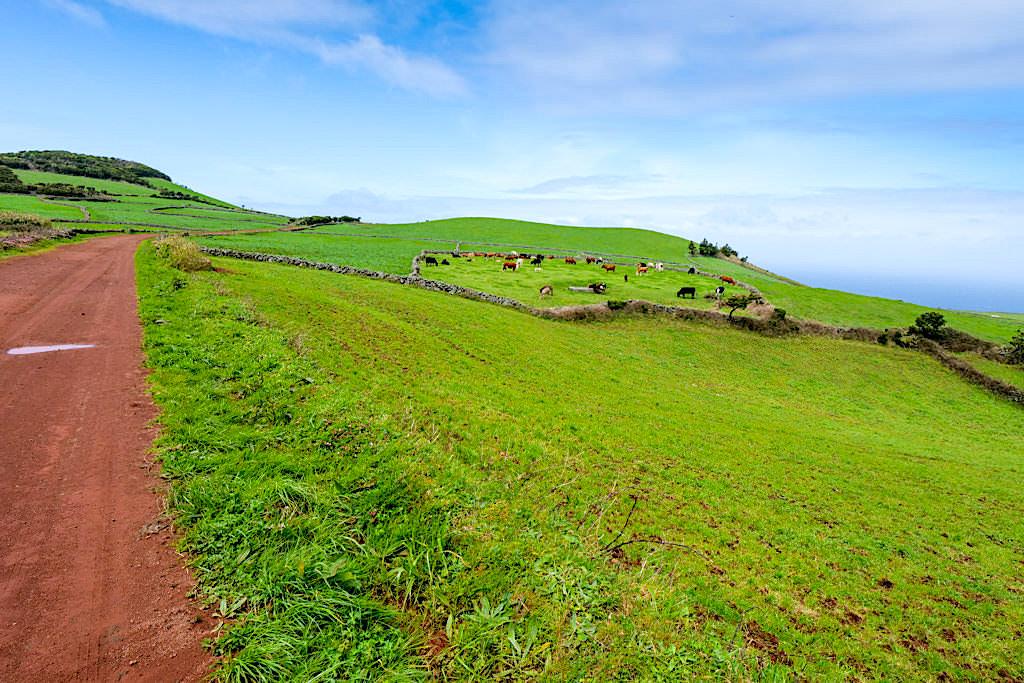 Vom Parque das Sete Fontes zum Farol da Ponta dos Rosais - Sao Jorge, Azoren