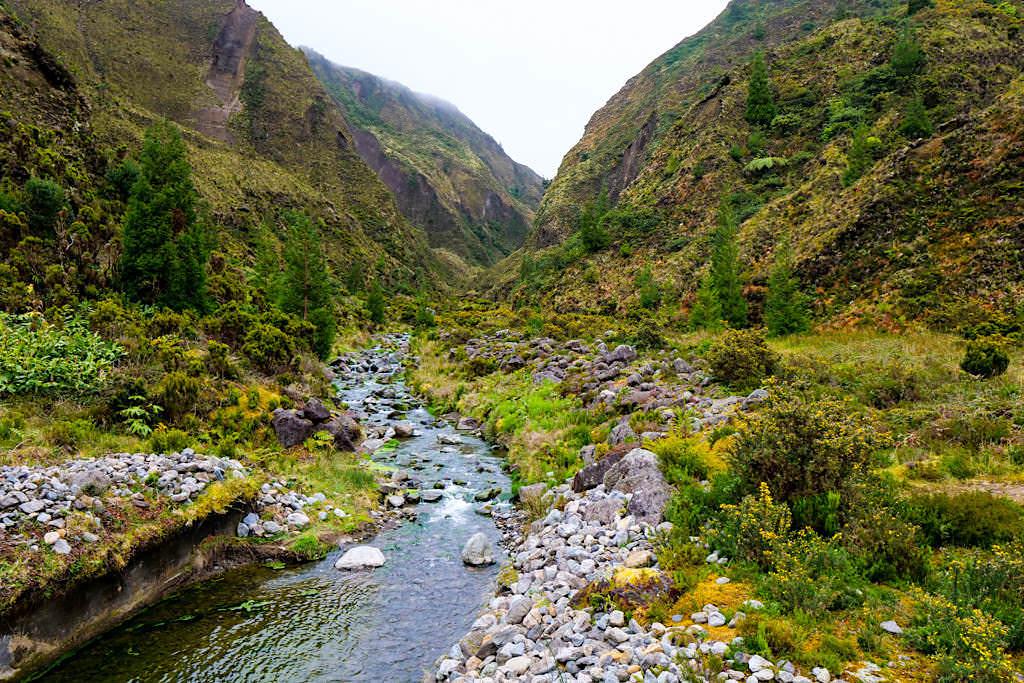 Vale das Lombadas & Ribeira Grande: an einem Regentag wirken die Farben noch viel intensiver - Sao Miguel, Azoren