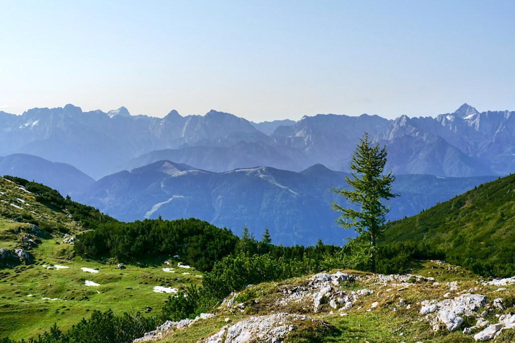 Dobratsch Gipfel zur Rosstratten: Almwiesen Wanderung - Kärnten, Österreich