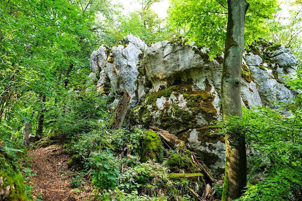 Wunderschöne Klamm-Wanderung bei Riedenburg - Altmühltal Highlight - Bayern