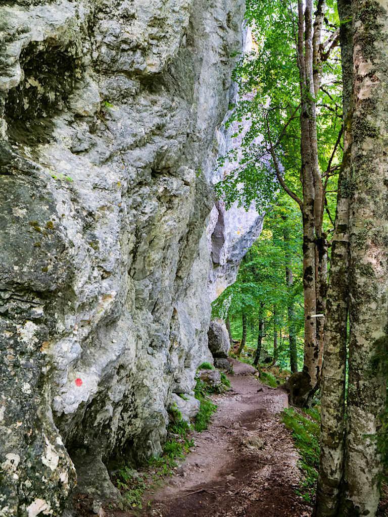 Laghi di Fusine - Masso Marinelli: riesige Fels-Fundlinge - Tarvisio, Italien