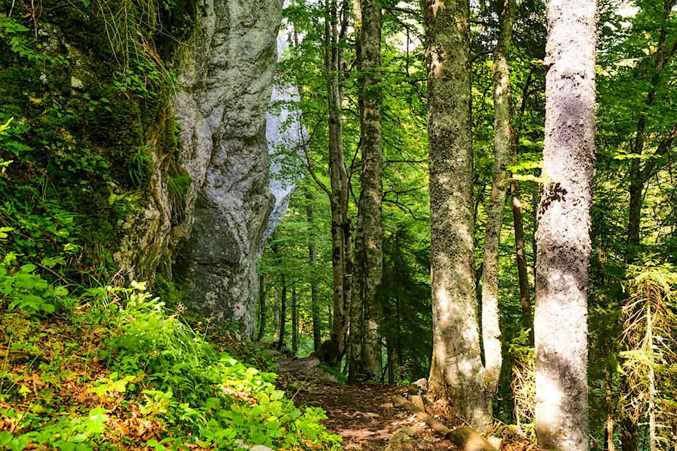 Laghi di Fusine - Waldwege entlang gigantischer Findlinge: Marinelli Felsen - Tarvisio, Italien