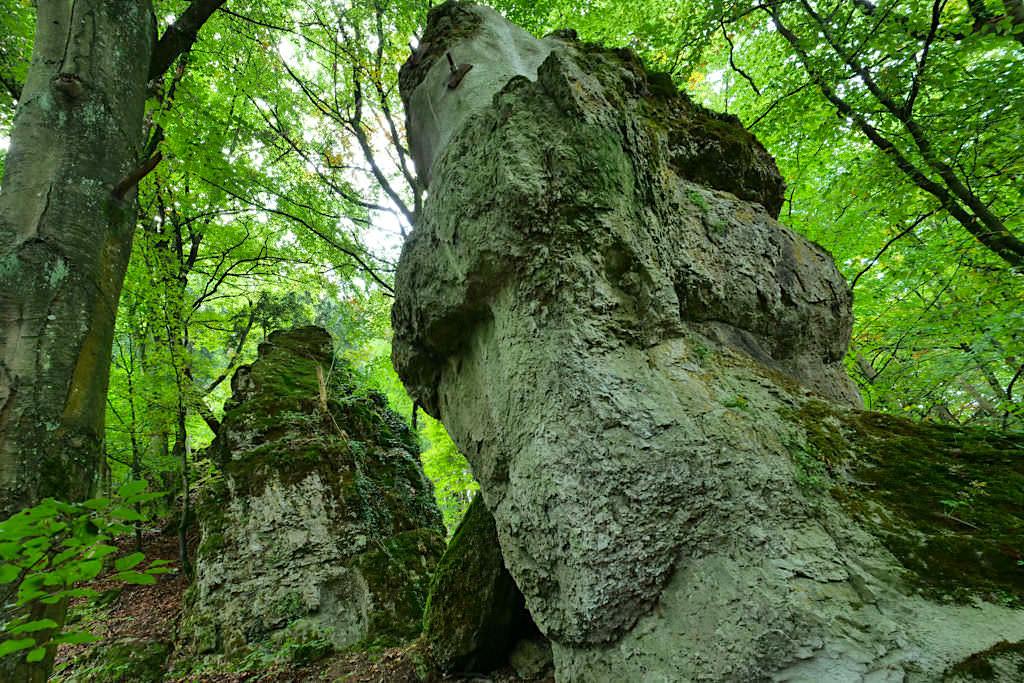 Altmühltal Klamm Wanderung mit imposanten Felsen - Von Riedenburg nach Prunn - Bayern