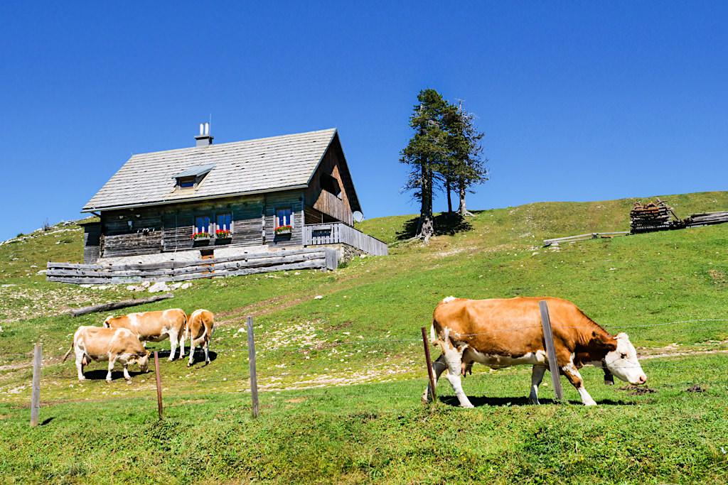 Rosstratten Almhütte zu Beginn der Dobratsch Wanderung - Kärnten, Österreich