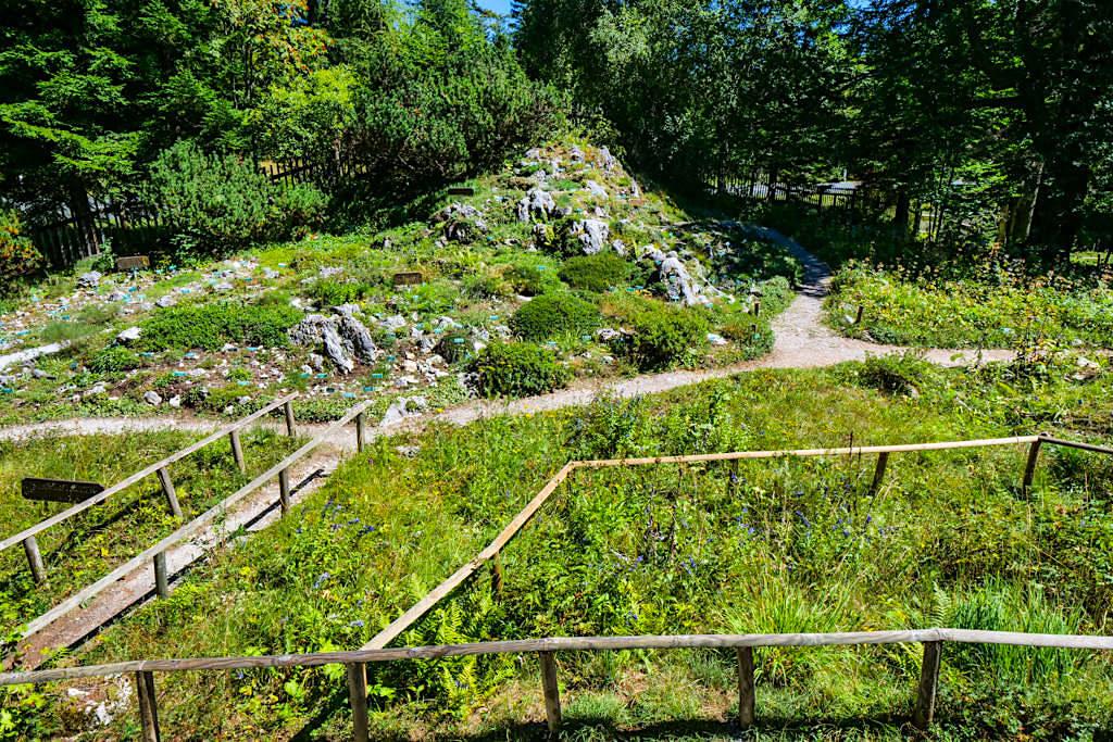 Villacher Alpenstraße Highlights - Der Alpengarten mit mehr als 1000 Pflanzen - Kärnten, Österreich