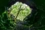 Gruta das Torres : Bedeutendes Höhlen- & Lavaröhren-System auf Pico
