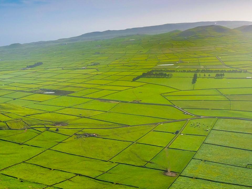 Serra do Cume eines der Terceira Highlights - schönster Höhenzug & faszinierende Ausblicke über das typische Weideflächen-Patchwork auf Terceira - Azoren
