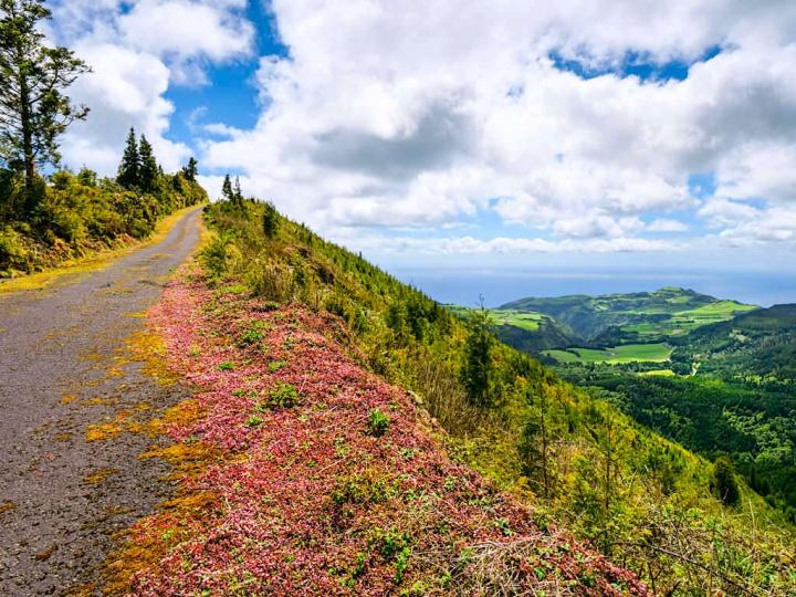 Serra da Tronqueira, Pico Bartolomeu, Planalto dos Graminhais - Die besten Highlights & Geheimtipps für den wildenschönen Osten von Sao Miguel - Azoren