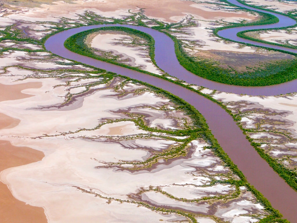 Wyndham - King River, Schwemmlandschaft & Mangrovensümpfe - Kimberley, Western Australia