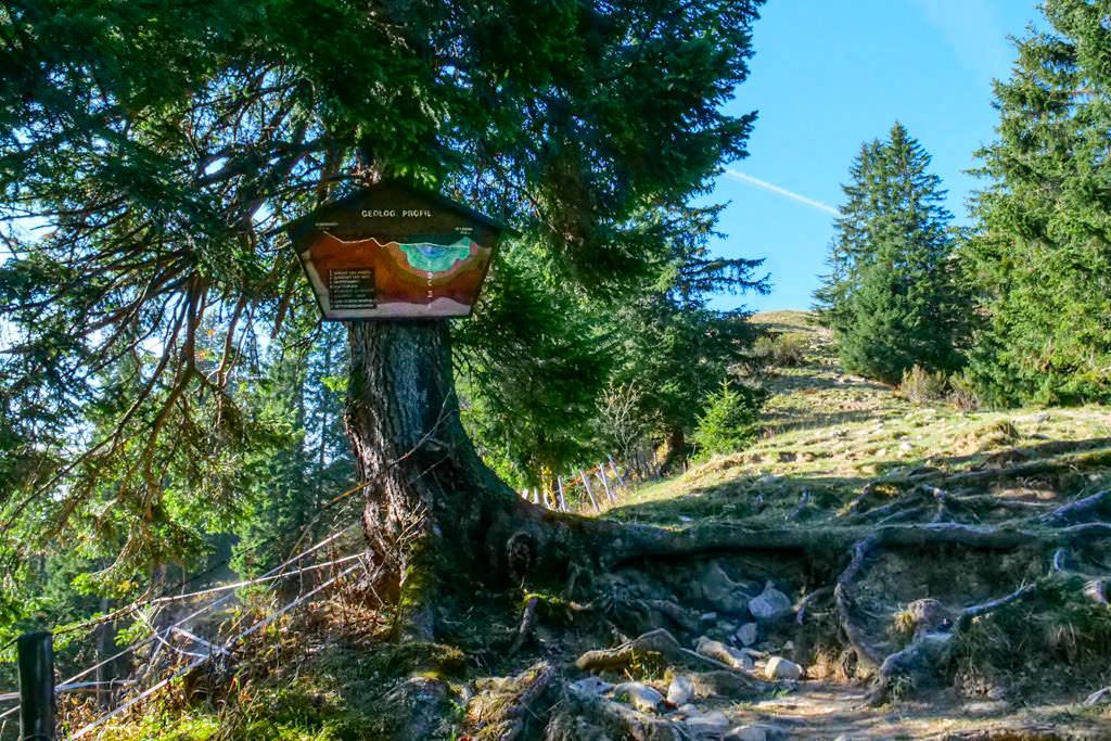 Risserkogel Wanderung - Interessanter Alpenlehrpfad beim Setzberg - Tegernsee, Bayern