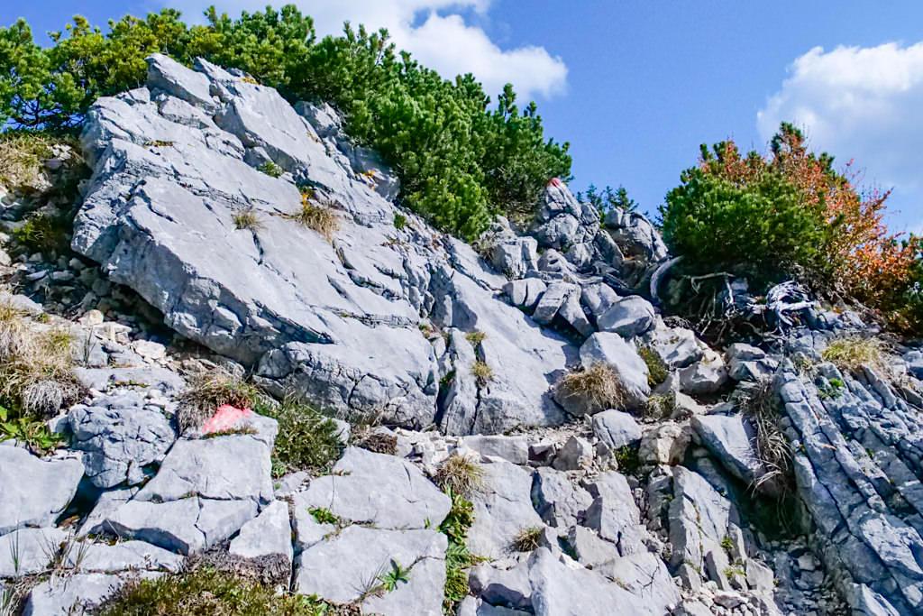 Risserkogel Wanderung - Felsiger Abschnitt & Steig zum Klettern vor dem Gipfel - Tegernsee, Bayern