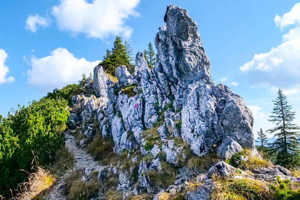 Risserkogel Wanderung - Der schönste Abschnitt der Wanderung: Luftiger Steig am Westkamm - Tegernsee, Bayern